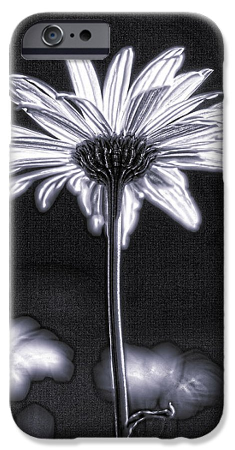 Black & White IPhone 6 Case featuring the photograph Daisy by Tony Cordoza