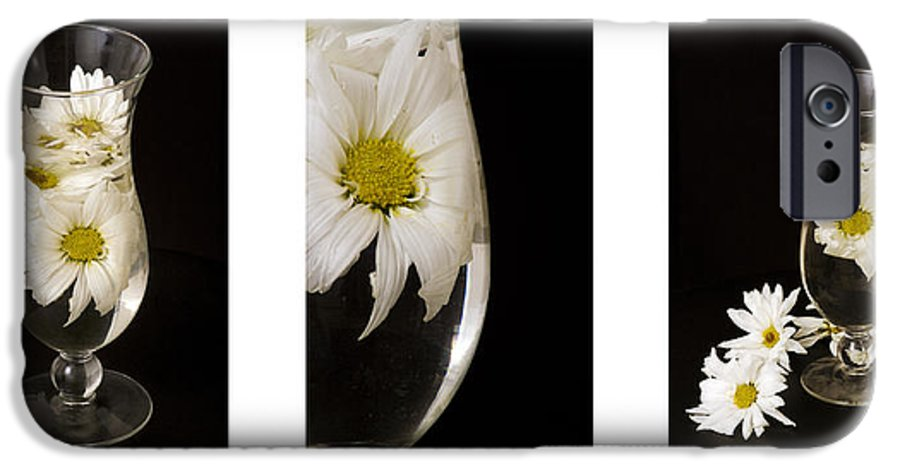 Flowers IPhone 6 Case featuring the photograph Daisy Triptych by Ayesha Lakes