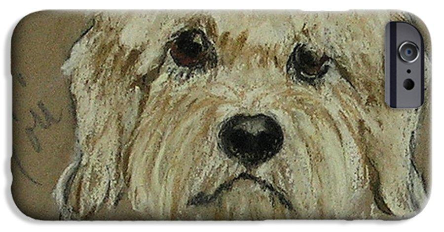 Dandie Dinmont Terrier IPhone 6 Case featuring the drawing Dandie by Cori Solomon
