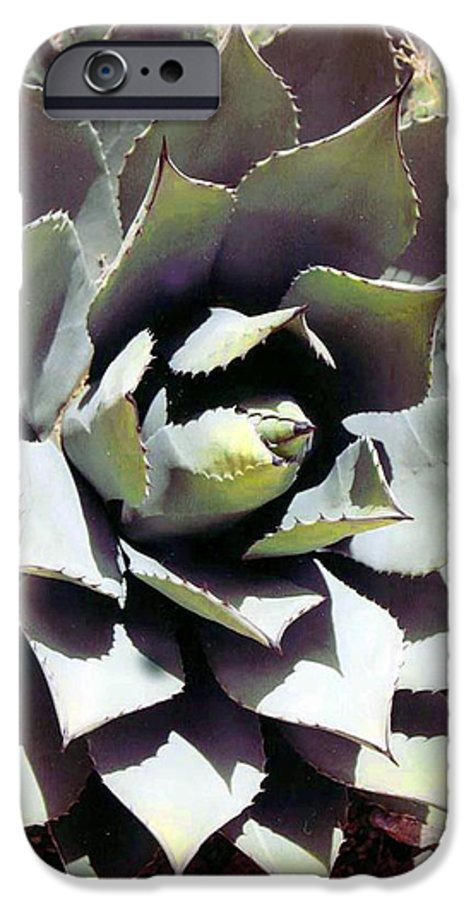 Flower IPhone 6 Case featuring the photograph Dessert Agave by Margaret Fortunato