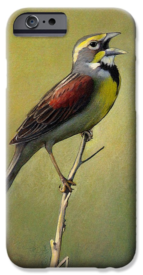 Birds IPhone 6 Case featuring the drawing Dickcissel Summer Song by Bruce Morrison