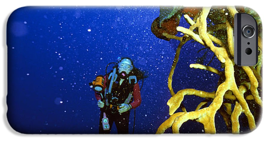 Dive IPhone 6 Case featuring the photograph Diving The Wall At Little Cayman by Carl Purcell