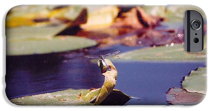 Insect IPhone 6 Case featuring the photograph Dragon Fly by Margaret Fortunato