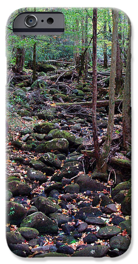 River IPhone 6 Case featuring the photograph Dry River Bed- Autumn by Nancy Mueller