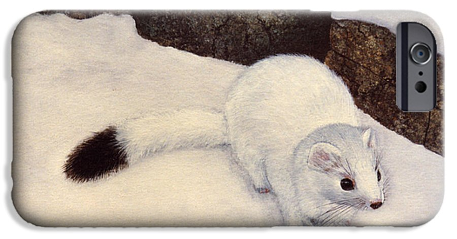 Wildlife IPhone 6 Case featuring the painting Ermine In Winter by Frank Wilson