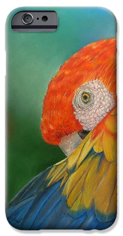 Bird IPhone 6 Case featuring the painting Escondida by Ceci Watson