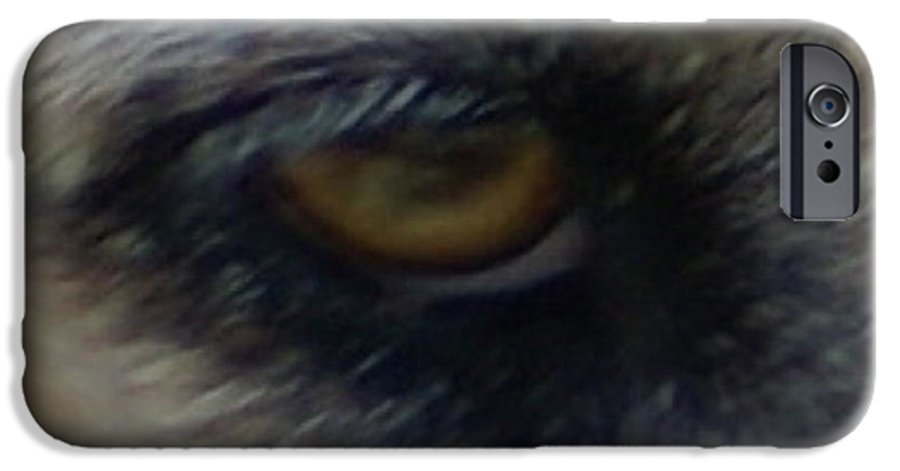 Eyes IPhone 6 Case featuring the photograph Eye Of The Beholder by Debbie May