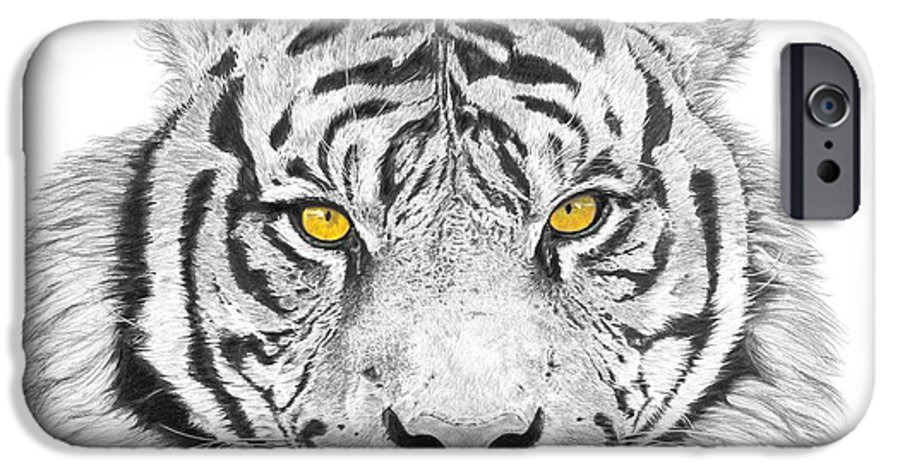 Tiger IPhone 6 Case featuring the drawing Eyes Of The Tiger by Shawn Stallings