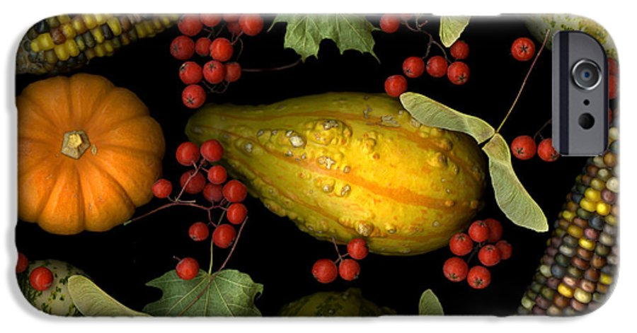 Slanec IPhone 6 Case featuring the photograph Fall Harvest by Christian Slanec