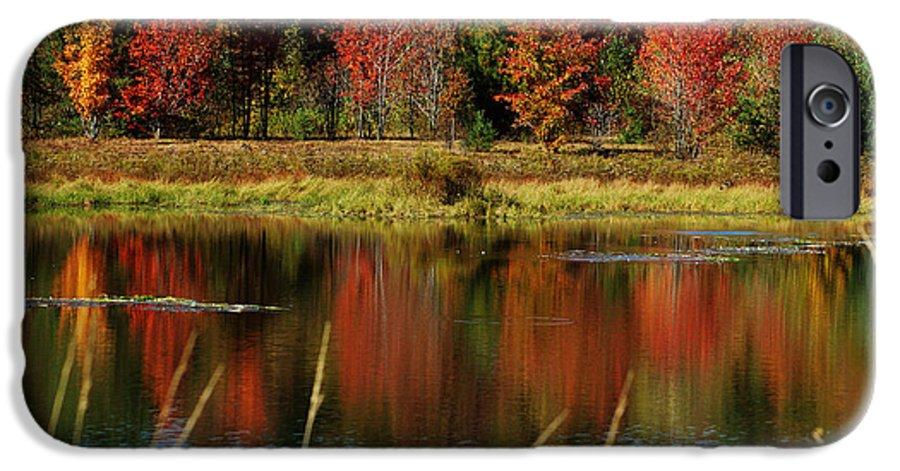 Autumn IPhone 6 Case featuring the photograph Fall Splendor by Linda Murphy