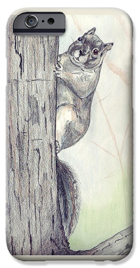 Color Pencil IPhone 6 Case featuring the drawing Feeder Raider by Debra Sandstrom