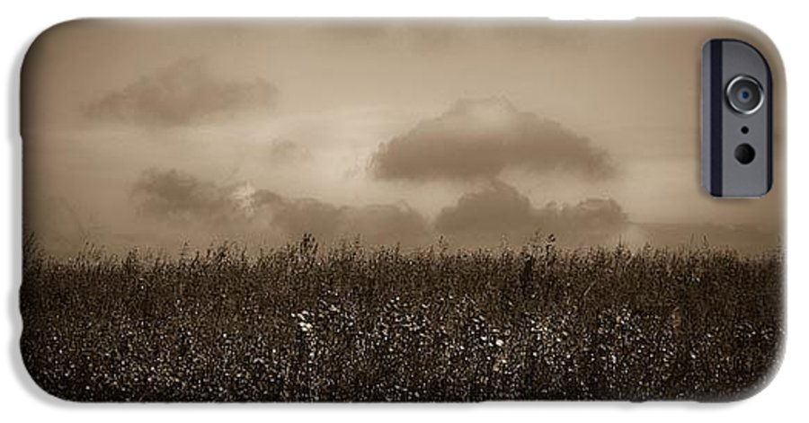 Poland IPhone 6 Case featuring the photograph Field In Sepia Northern Poland by Michael Ziegler