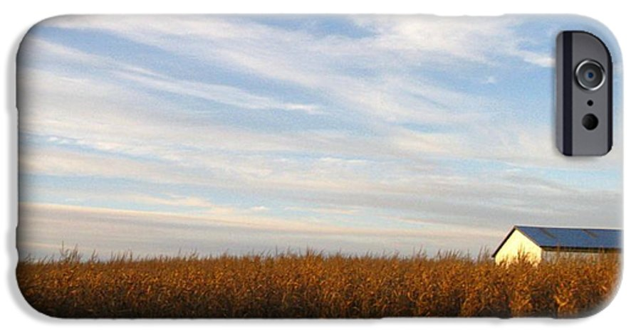 Country IPhone 6 Case featuring the photograph Fields Of Gold by Rhonda Barrett
