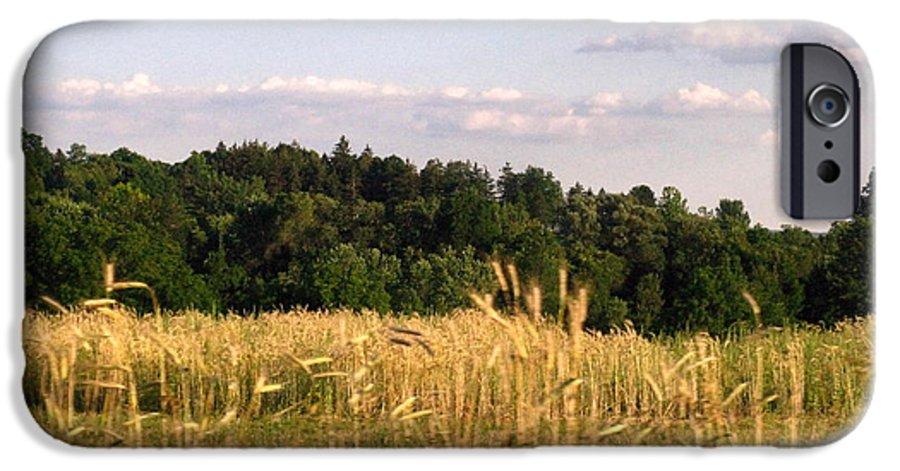 Field IPhone 6 Case featuring the photograph Fields Of Grain by Rhonda Barrett