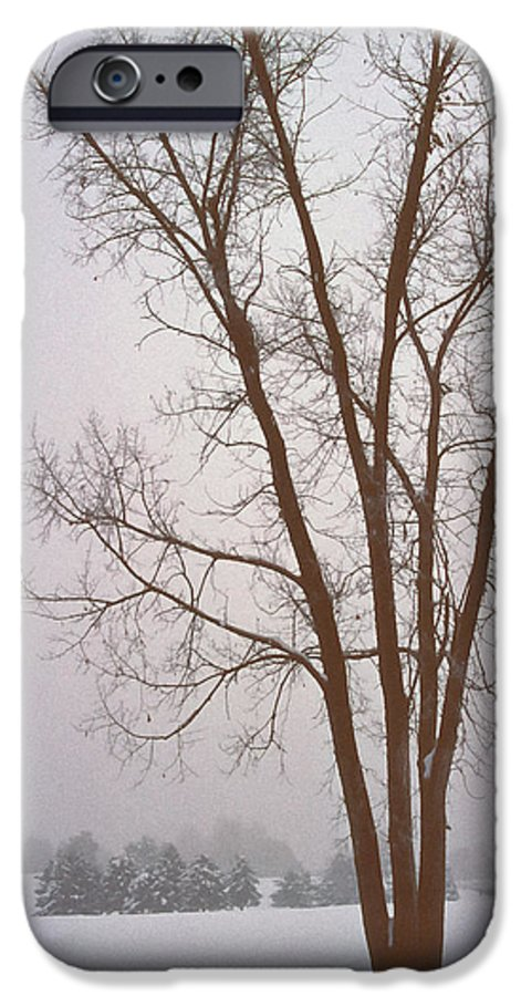 Nature IPhone 6 Case featuring the photograph Foggy Morning Landscape 13 by Steve Ohlsen