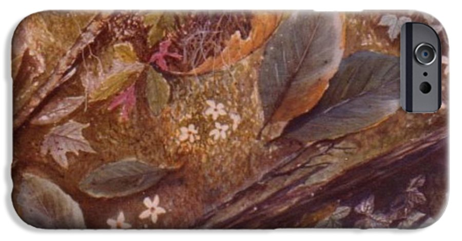 Leaves; Forest; Flowers IPhone 6 Case featuring the painting Forest Floor by Ben Kiger