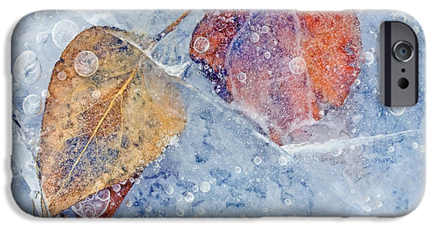 Ice IPhone 6 Case featuring the photograph Fractured Seasons by Mike Dawson