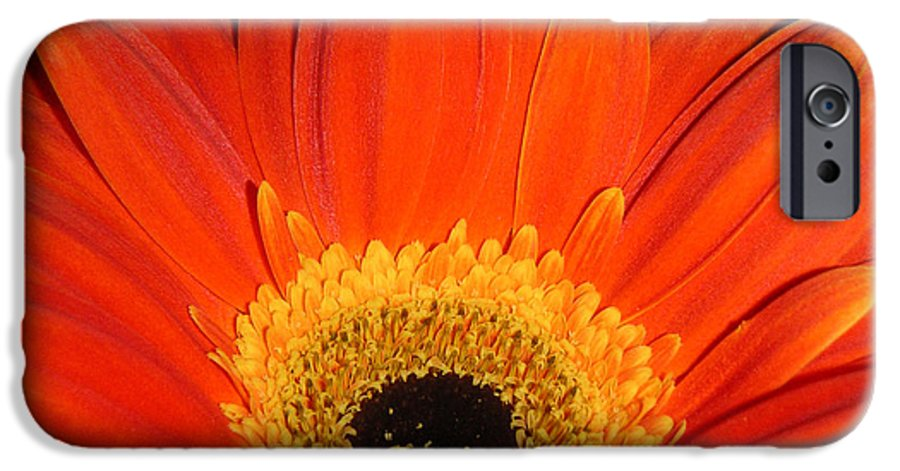 Nature IPhone 6 Case featuring the photograph Gerbera Daisy - Glowing In The Dark by Lucyna A M Green