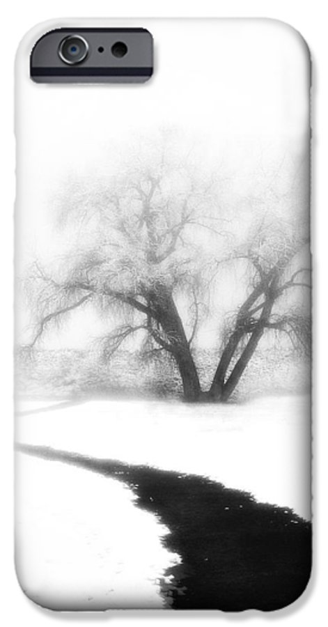 Tree IPhone 6 Case featuring the photograph Getting There by Marilyn Hunt