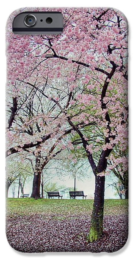Cherry Blossoms IPhone 6 Case featuring the photograph Gifts by Mitch Cat