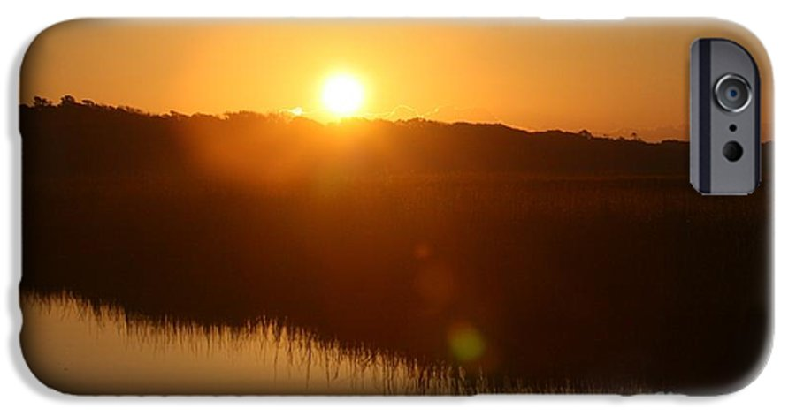 Glow IPhone 6 Case featuring the photograph Gold Morning by Nadine Rippelmeyer