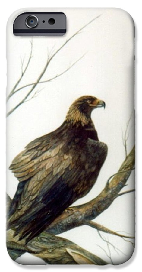 Eagle IPhone 6 Case featuring the painting Golden Eagle by Ben Kiger