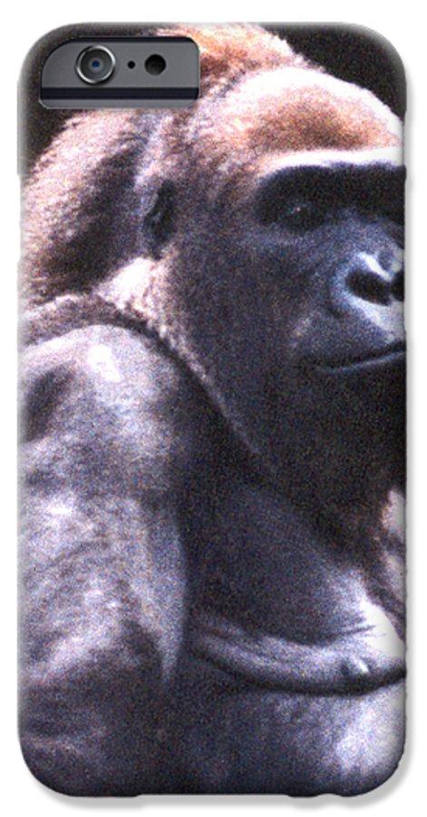 Gorilla IPhone 6 Case featuring the photograph Gorilla by Steve Karol
