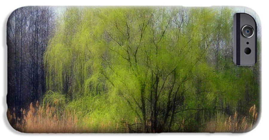 Scenic Art IPhone 6 Case featuring the photograph Green Tree by Linda Sannuti
