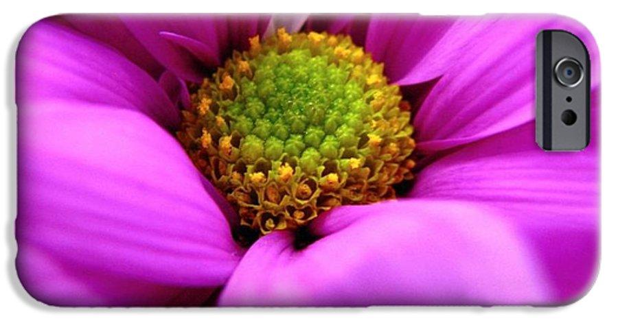 Flower IPhone 6 Case featuring the photograph Hidden Inside by Rhonda Barrett