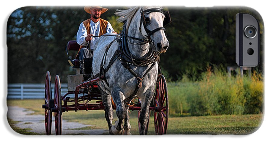 Horse IPhone 6 Case featuring the photograph Horse And Buggy by Lone Dakota Photography