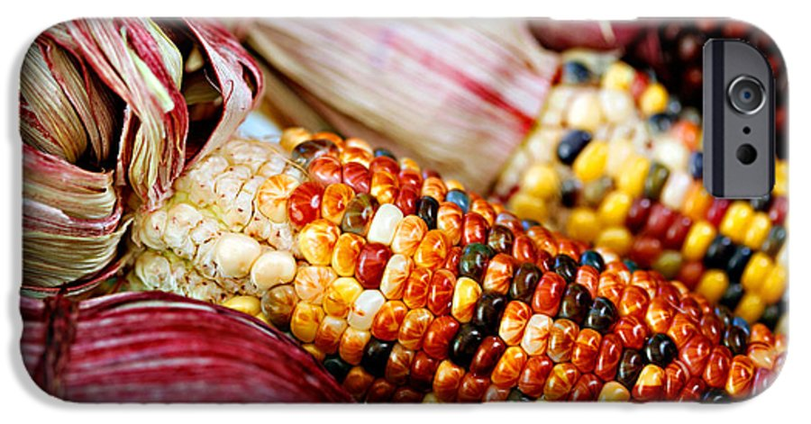 Corn IPhone 6 Case featuring the photograph Indian Corn by Marilyn Hunt