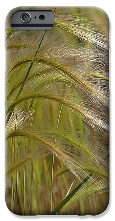 Grass IPhone 6 Case featuring the photograph Indiangrass Swaying Softly With The Wind by Christine Till