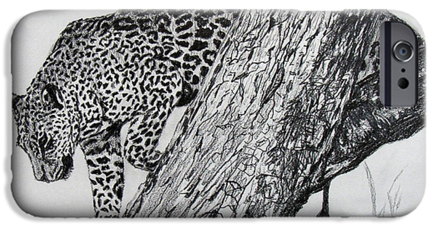 Original Drawing IPhone 6 Case featuring the drawing Jaquar In Tree by Stan Hamilton