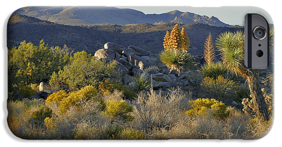 Sunset IPhone 6 Case featuring the photograph Joshua Tree National Park In California by Christine Till