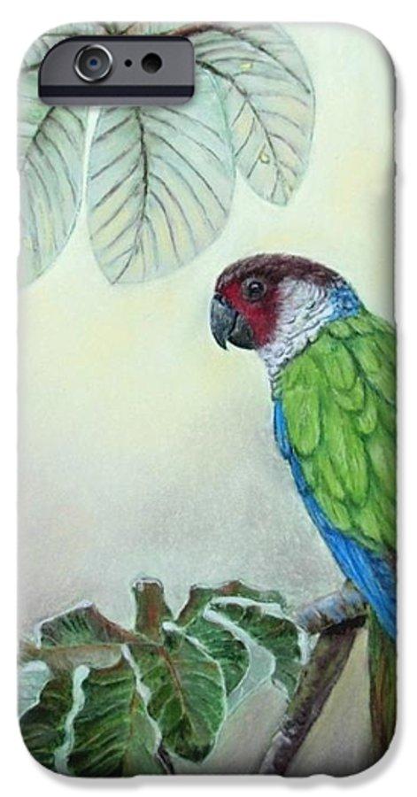 Wildlife IPhone 6 Case featuring the painting Kasanga Bajo El Guarumo by Ceci Watson