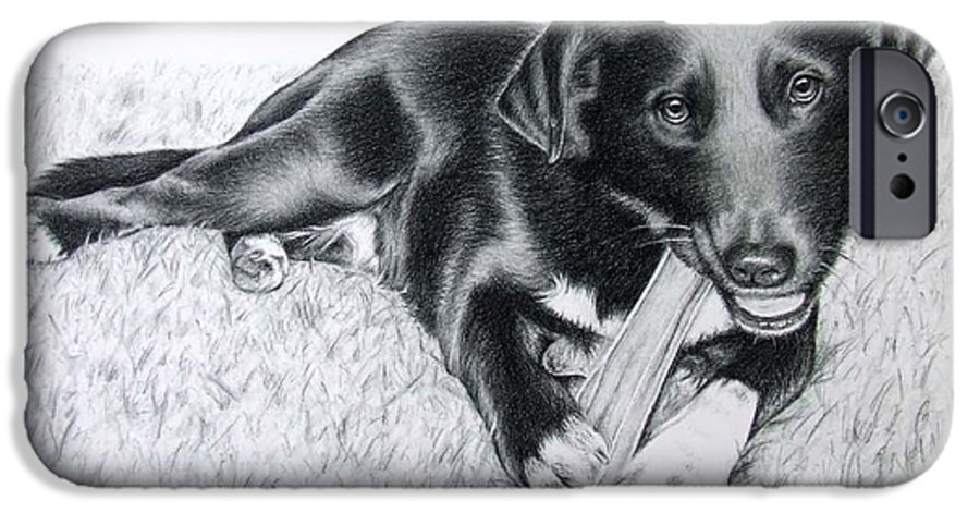 Dog IPhone 6 Case featuring the drawing Labrador Samy by Nicole Zeug