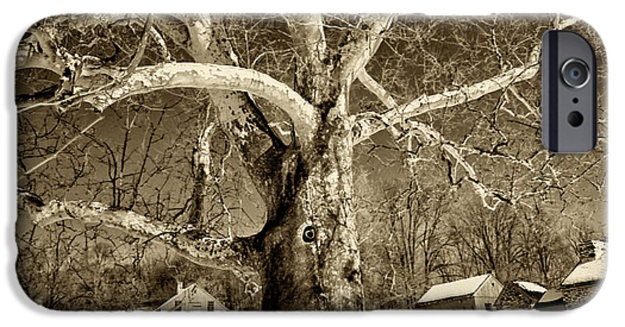 Sycamore Tree IPhone 6 Case featuring the photograph Lafayette Headquarters by Jack Paolini