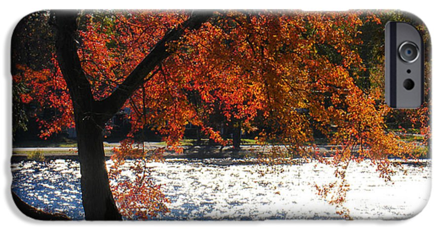 Landscape IPhone 6 Case featuring the photograph Lakewood by Steve Karol