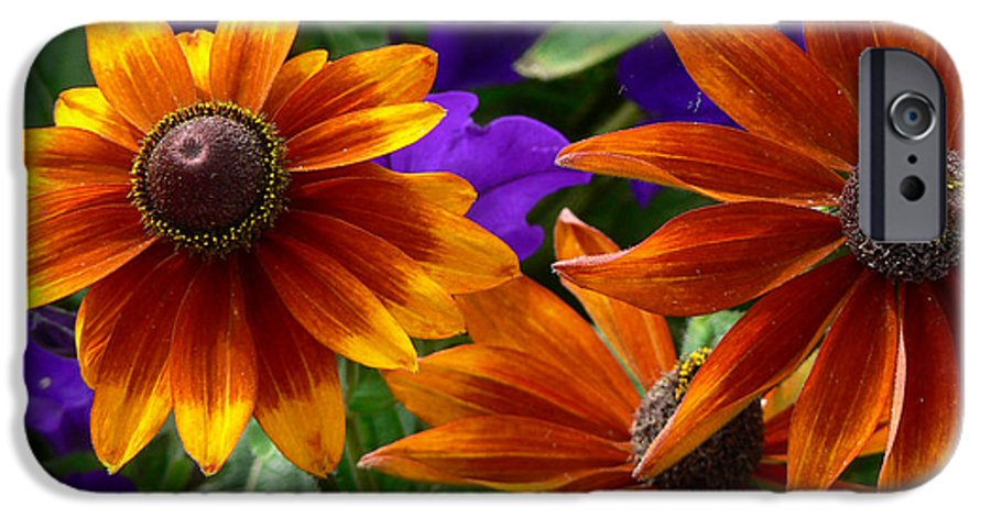 Flowers IPhone 6 Case featuring the photograph Layers Of Color by Larry Keahey