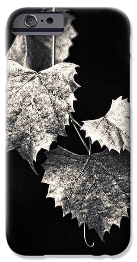 B&w IPhone 6 Case featuring the photograph Leaves by Christopher Holmes