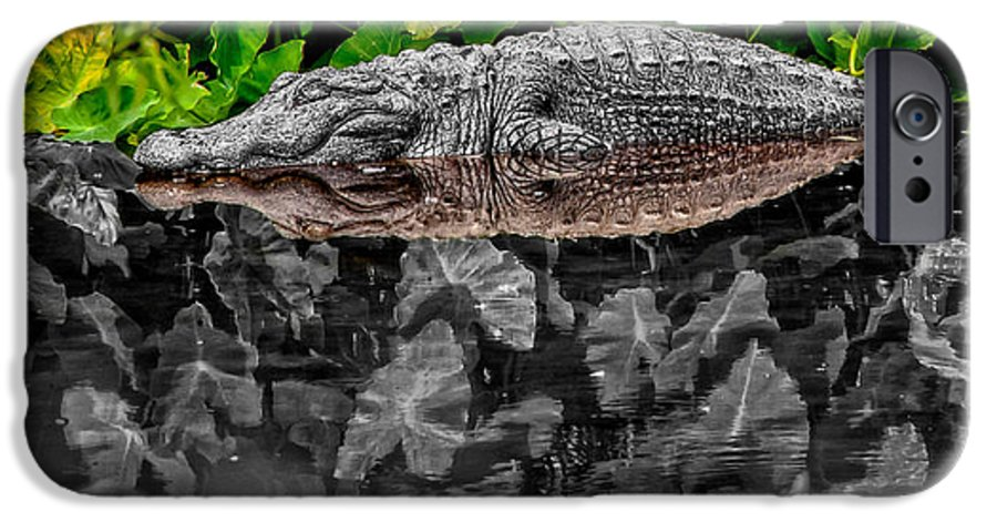 American IPhone 6 Case featuring the photograph Let Sleeping Gators Lie - Mod by Christopher Holmes