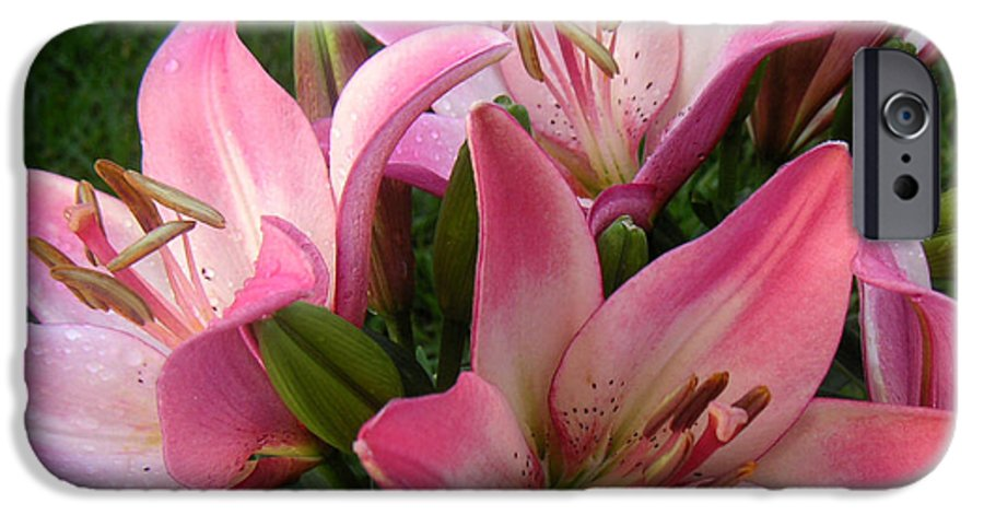 Nature IPhone 6 Case featuring the photograph Lilies In Company by Lucyna A M Green