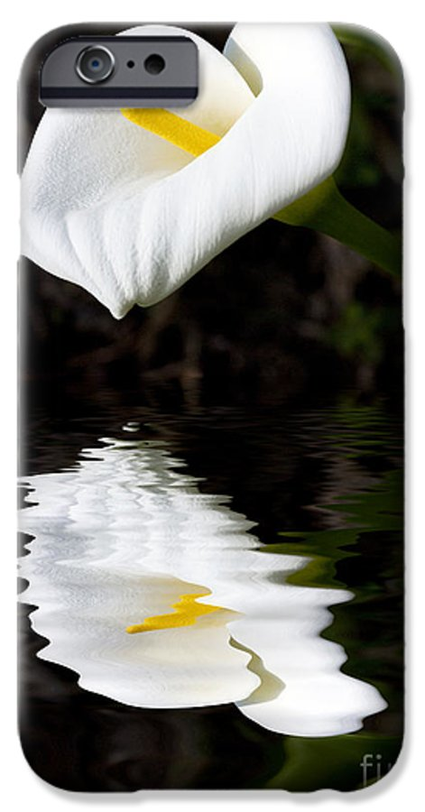 Lily Reflection Flora Flower IPhone 6 Case featuring the photograph Lily Reflection by Avalon Fine Art Photography