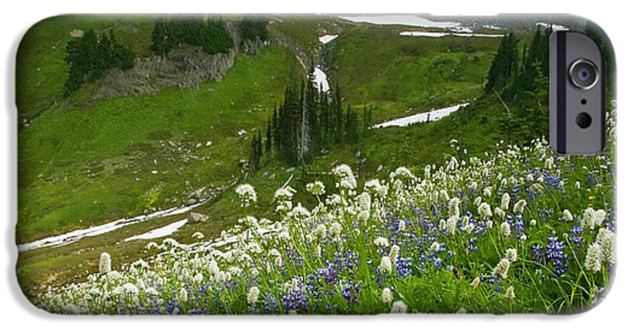Rainier IPhone 6 Case featuring the photograph Lupine Storm by Mike Dawson