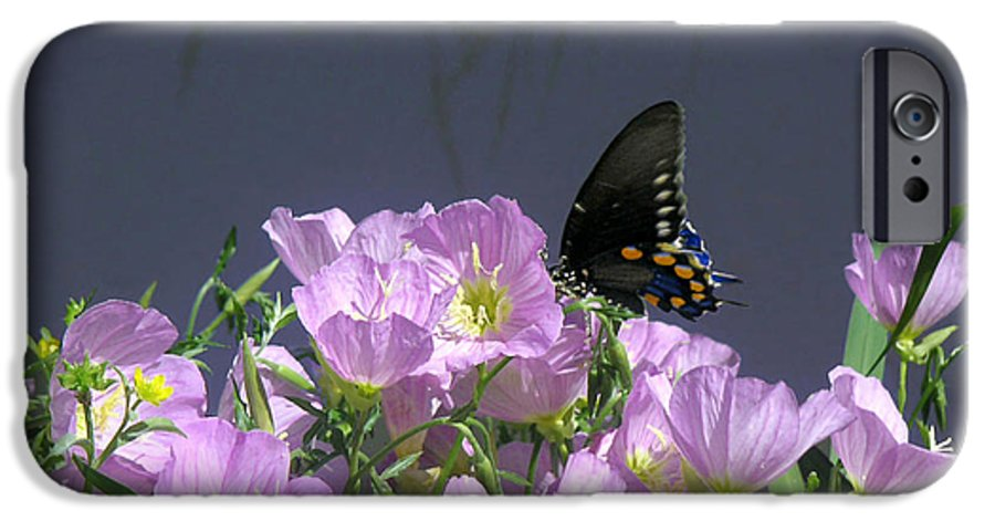 Nature IPhone 6 Case featuring the photograph Nature In The Wild - Profiles By A Stream by Lucyna A M Green
