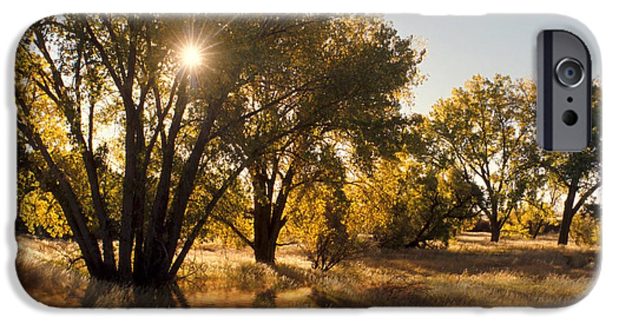 Ftrees IPhone 6 Case featuring the photograph Oliver Sunbursts by Jerry McElroy