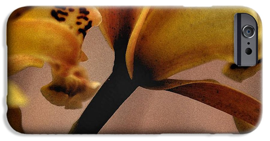 Orchid IPhone 6 Case featuring the photograph Orchid Yellow by Michael Ziegler