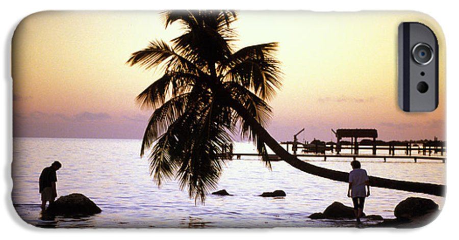 Sunset IPhone 6 Case featuring the photograph Palm At The Moorings by Carl Purcell