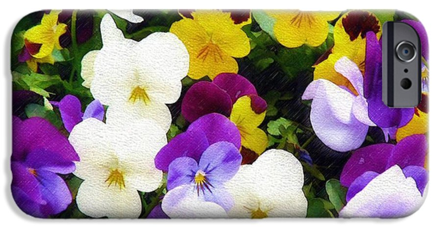 Pansies IPhone 6 Case featuring the photograph Pansies by Sandy MacGowan