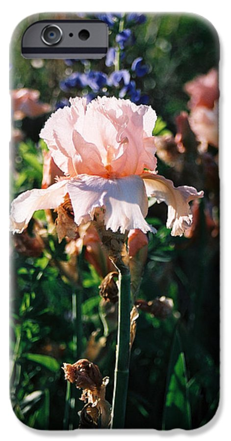 Flower IPhone 6 Case featuring the photograph Peach Iris by Steve Karol